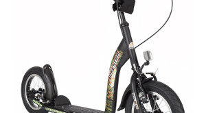 bike star Premium roller